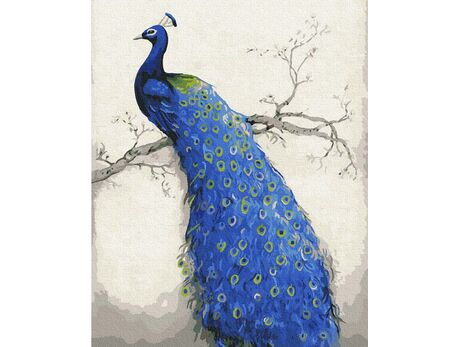 Peacock paint by numbers