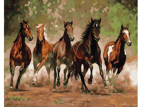 Horse gallop paint by numbers