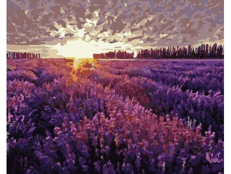 Sunset over the lavender field paint by numbers