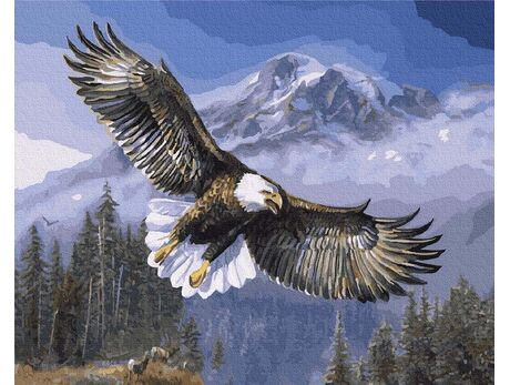 Spirit of freedom paint by numbers