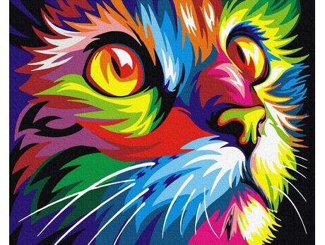 Rainbow cat paint by numbers