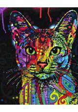 A cat's look
