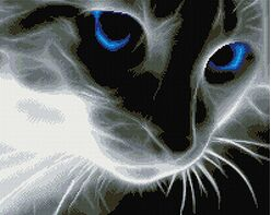 Blue Eyes(40x50CM)