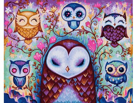 Fabulous owls paint by numbers
