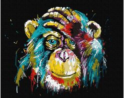 Rainbow chimpanzee