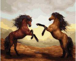 Unbridled stallions