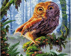 Wize owl