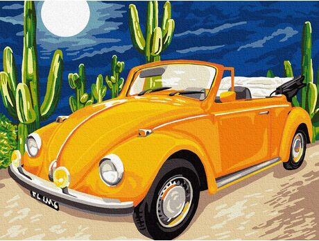 Warm nights in Mexico paint by numbers