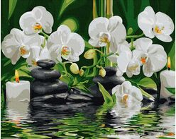 Orchids in quiet water