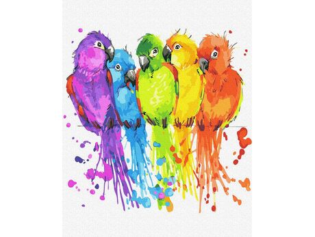 Colorful parakeets paint by numbers