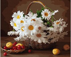 Basket of camomiles
