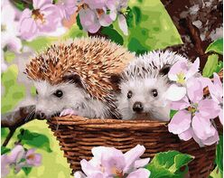 Hedgehogs in a basket