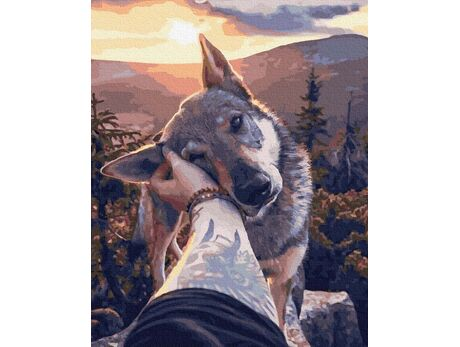 My loyal friend paint by numbers