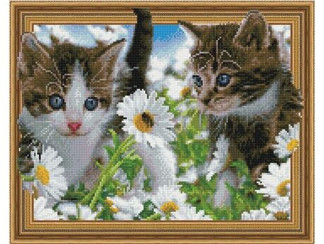 Kittens in the chamomile field