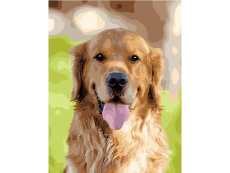 Happy labrador retriever paint by numbers