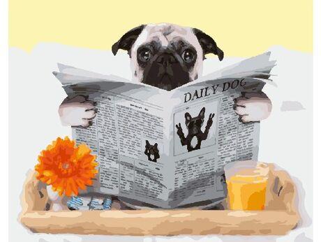 Dog's news
