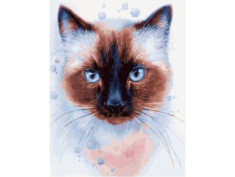 Siamese cat paint by numbers