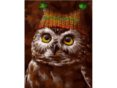 Owl in a hat paint by numbers