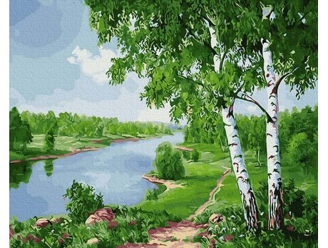 Birches on the river paint by numbers