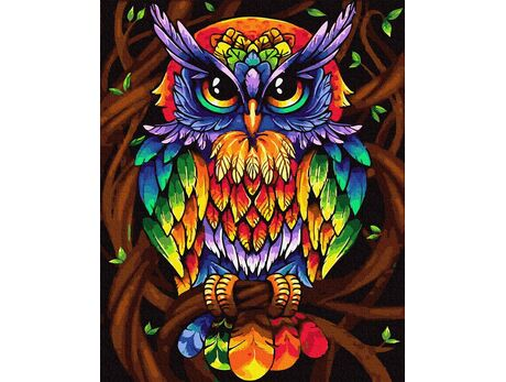 Rainbow owl paint by numbers