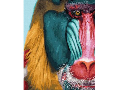 Mandril alpha paint by numbers