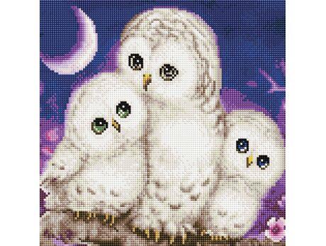 Polar owls diamond painting