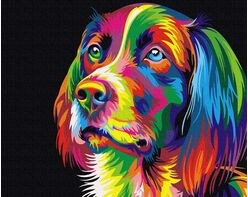 Colorful grace of the dog