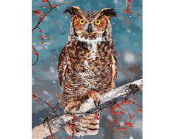 Owl - symbol of wisdom