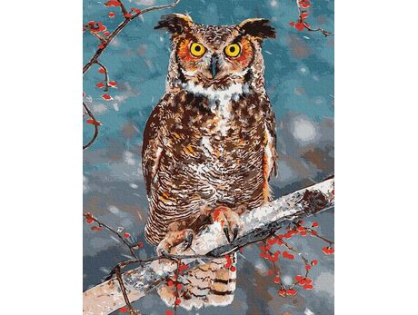 Owl - symbol of wisdom paint by numbers