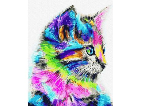 Holo cat paint by numbers