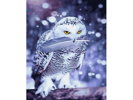 Snow owl paint by numbers