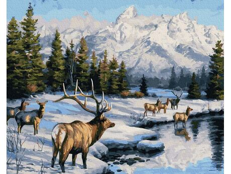 The beauty of a wild winter paint by numbers