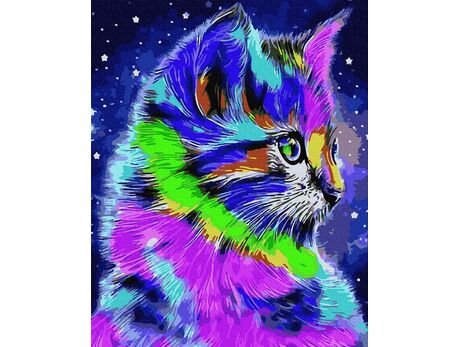 Colorful cat paint by numbers