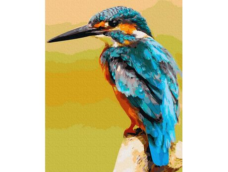 Kingfisher paint by numbers