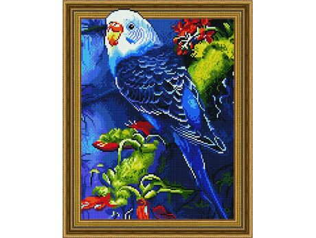 Budgie diamond painting