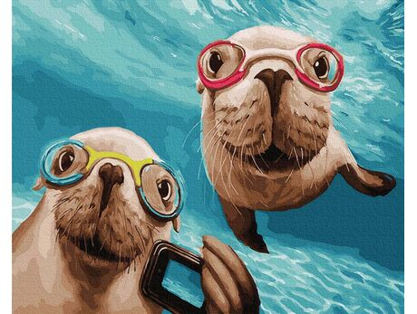 Curious seals paint by numbers
