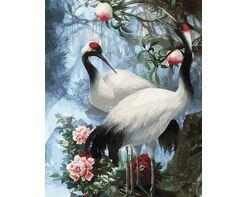 Beautiful cranes