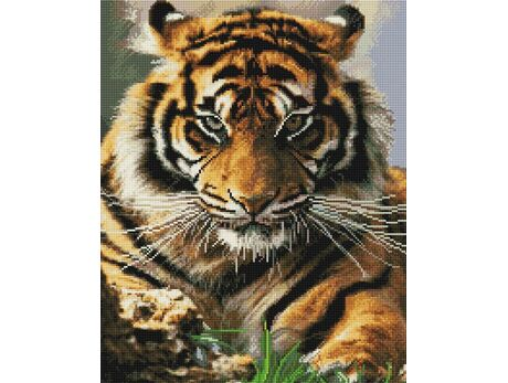 Tiger's eyes diamond painting