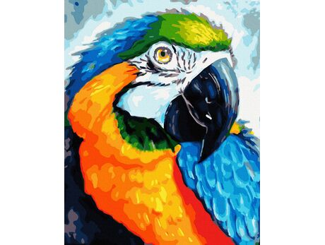 Rainbow Parrot paint by numbers