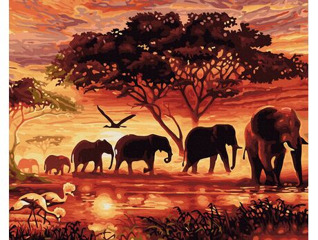 Spirit of Africa paint by numbers