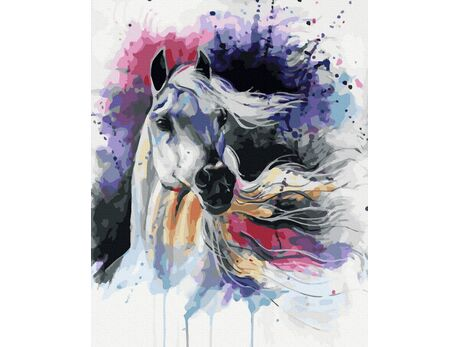 Arabian Horse paint by numbers