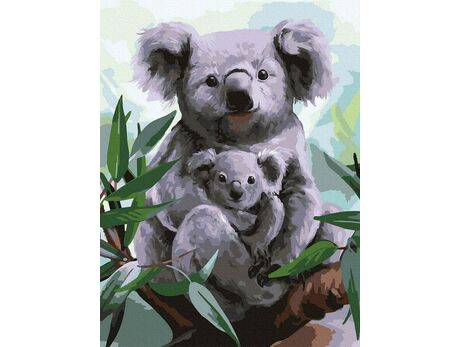 Koala paint by numbers