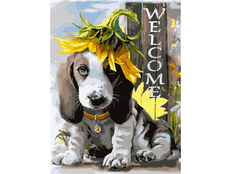 Welcome! paint by numbers