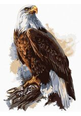 Eagle with a crown