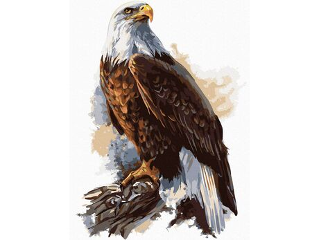 Eagle with a crown paint by numbers