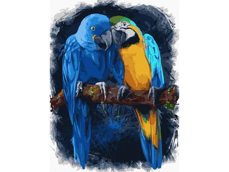 Lovebirds paint by numbers