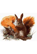 Preventive Squirrel