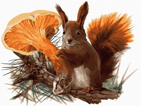 Preventive Squirrel paint by numbers