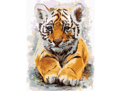 Baby tiger paint by numbers