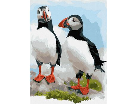 Colorful Puffins from Iceland paint by numbers